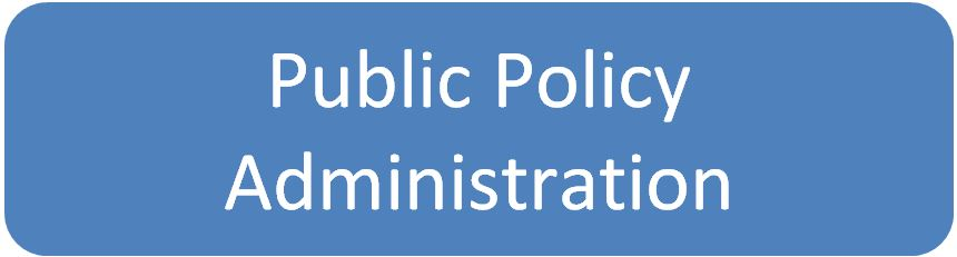 Public Policy custom writing review